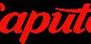 200px-logo-stade-saputo.svg.png