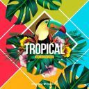 fond-tropical-colore-design-realiste_23-2147878112.jpg